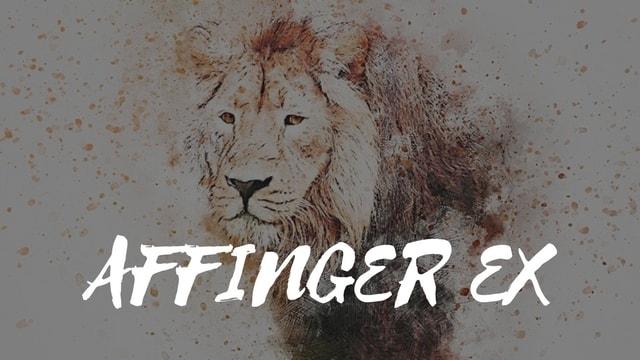 AFFINGER5(WING)は評判通りの優秀テーマ!導入後の効果も絶大!【口コミ】
