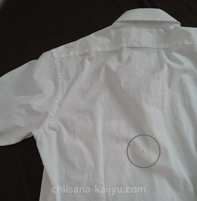 リネットのクリーニングに出す前のワイシャツの背中のシミ